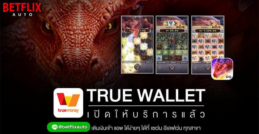 slot-wallet
